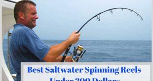 Best Saltwater Spinning Reels Under 200