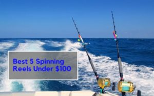 Best Spinning Reels Under 100 Dollars Buying Guide for Fishing 2019