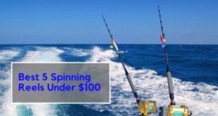 Best 5 Spinning Reels Under 1oo Dollars