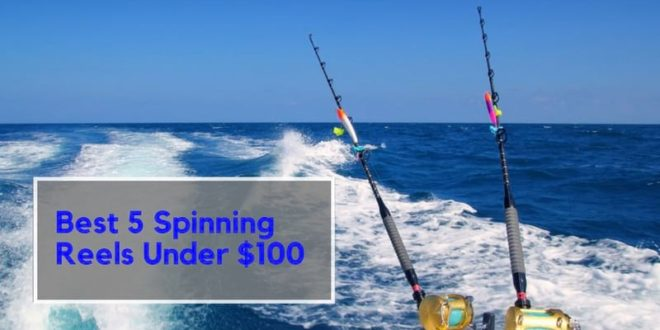 Best 5 Spinning Reels Under 1oo Dollars