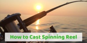 How to Cast Spinning Reel | A Guide from Pro Angler