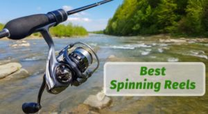 Best Spinning Reels Review 2019 [Tested]