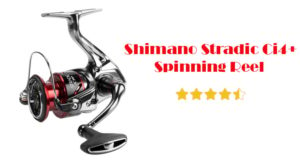 Shimano Stradic Ci4+ Review – The Ultimate Lightweight Fishing Reel
