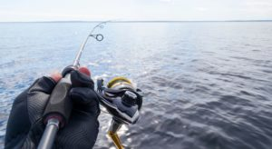 8 Best Saltwater Spinning Rods for the Money [Cast Like an Avid Angler]