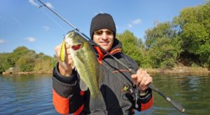 Bass Fishing Rod Selection Guide for Beginners [Step by Step Guide]