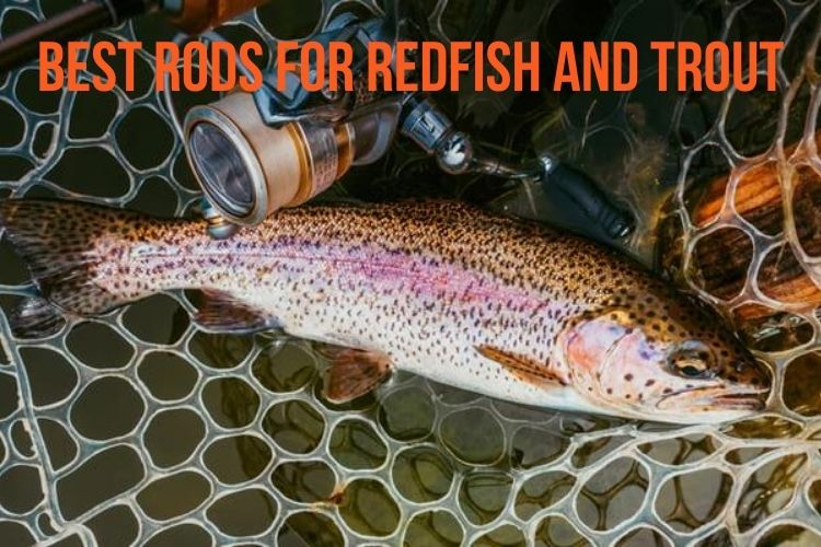 best rod for redfish and trout
