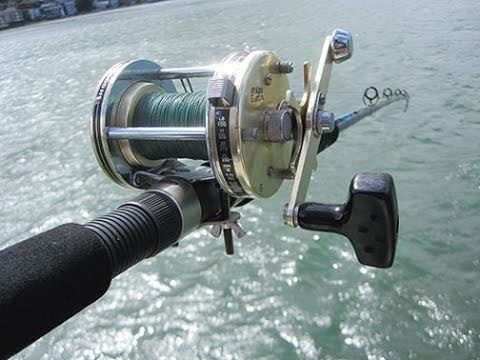 Best fishing line for conventional reels