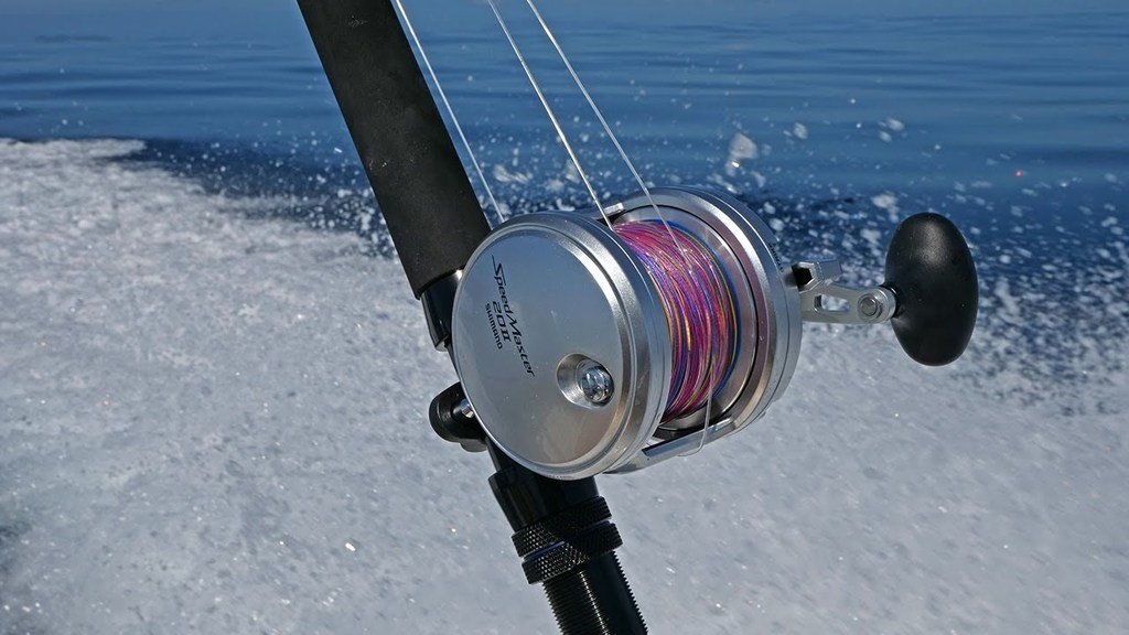 Shimano Speedmaster Lever Drag Fishing Reel in Action