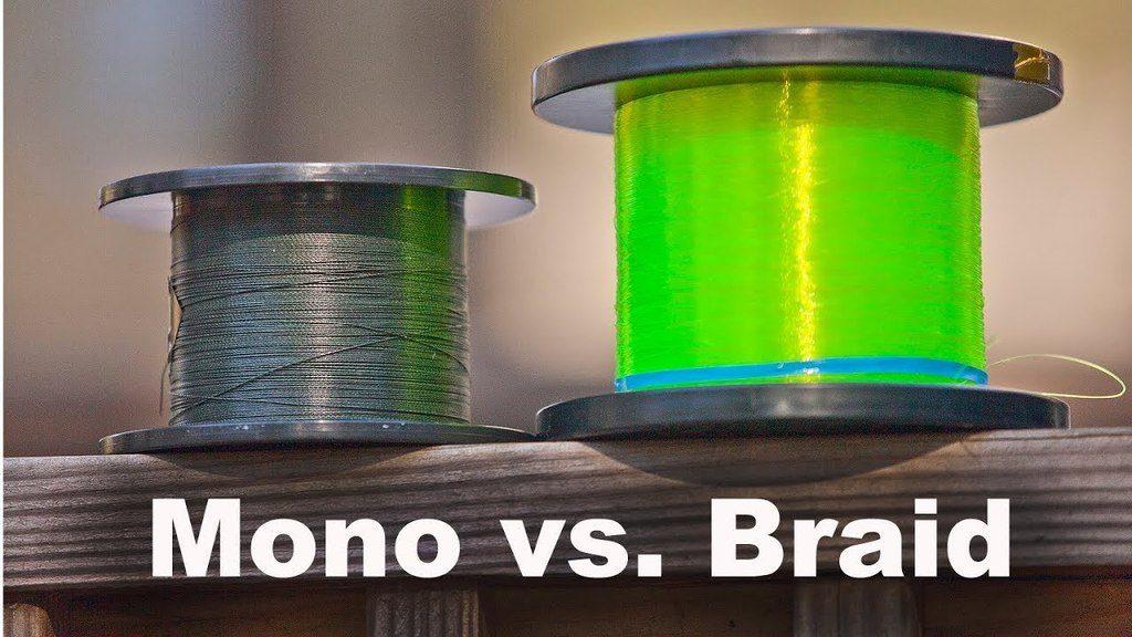 Mono or Braid fishing line
