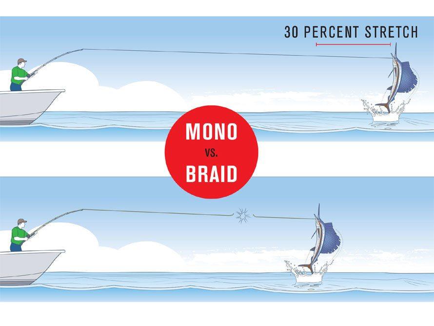 Braid vs mono stretch comparison